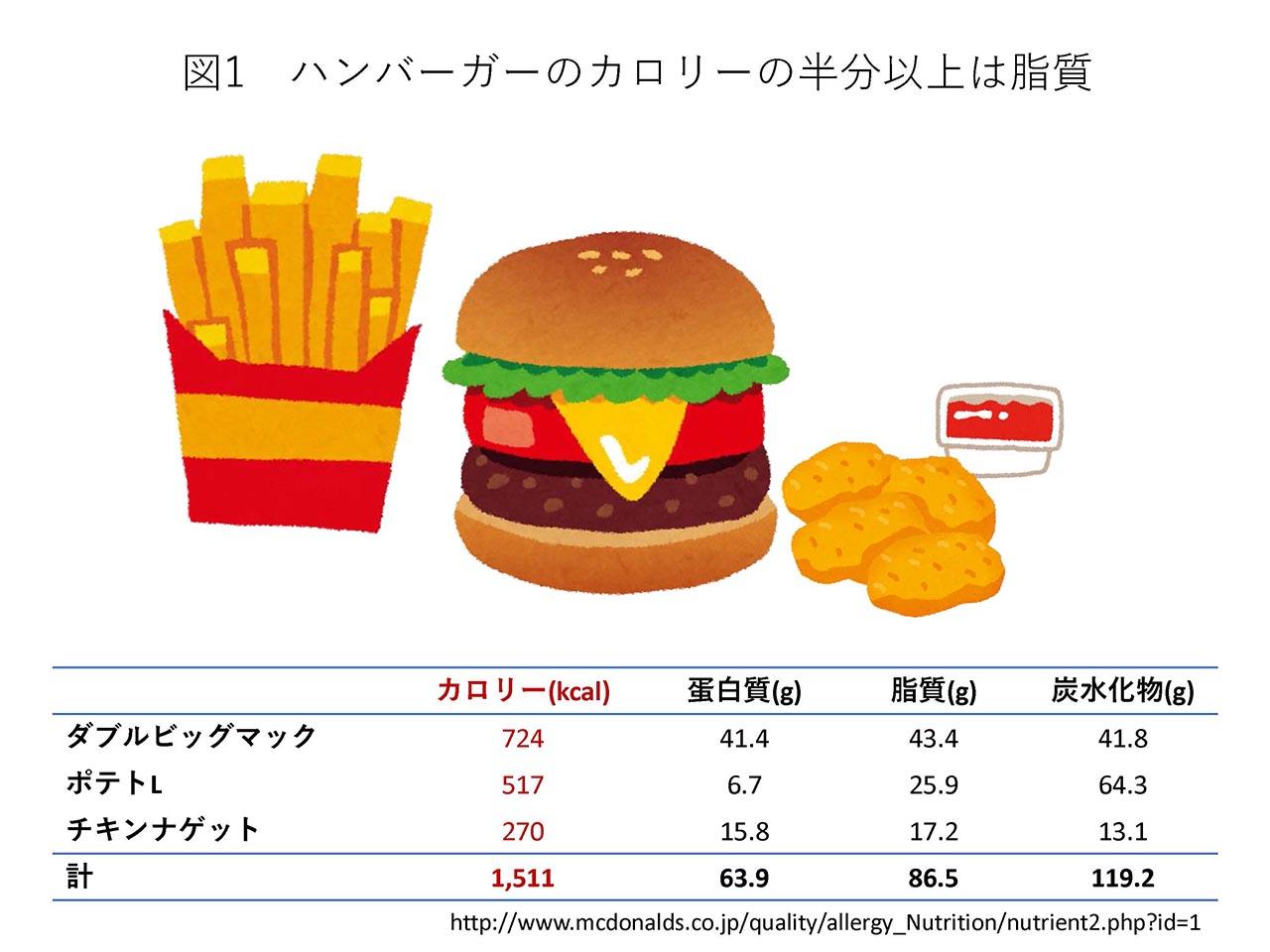 カロリー 計算 摂取